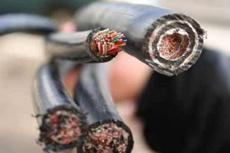 Сто метрів вирізаного задля наживи кабелю зв'язку можуть коштувати багатьох життів