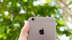 Этот владелец iPhone 6s нашел действительно удачное применение камере смартфона