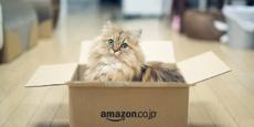Amazon начнет активно бороться с подделками в 2017