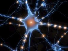Учёные научили нейросети предсказывать будущее