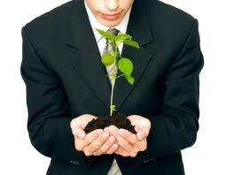 "Как стартапу ""перерасти"" онлайн — советы бизнес-гуру"