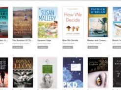 Рынок e-books. Денег нет, но вы держитесь