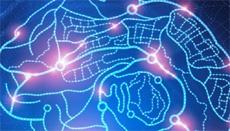 Канадцы предлагают лечить травмы мозга видеоиграми