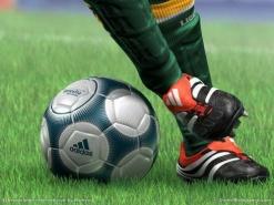 Топ-10 спорт-бизнесов, которые заработают на Евро-2012