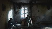 Создатели This War of Mine подарили пиратам лицензионные копии игры