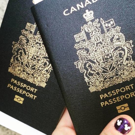 pasport_moshenniki_2.jpeg