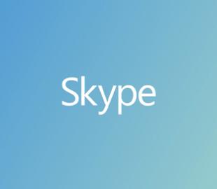 В Skype добавлена возможность отключения аудио собеседникам