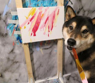 В Канаде пара научила своего пса рисовать и продает его картины в Интернете