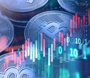 Поиск Google может способствовать росту биткоина — исследования