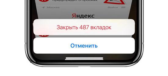 Safariin3.jpg (28 KB)