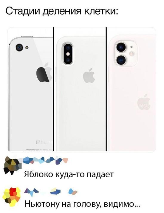 1715115.jpg (67 KB)