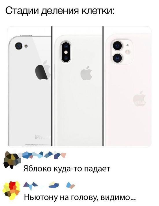 1568376418-socseti-5.jpg (108 KB)
