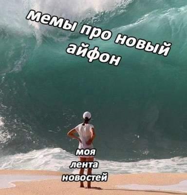 41536847137_memy6.jpeg (21 KB)