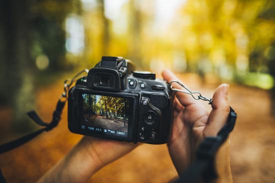 camera_6.jpg (112 KB)