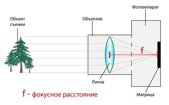 5focus01.jpg (30 KB)