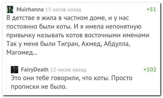 6prikolnye-kommentarii-iz-socsetej-174.jpg (40 KB)