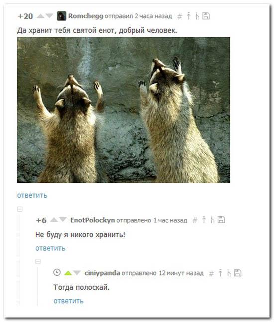 9prikolnye-kommentarii-iz-socsetej-52.jpg (66 KB)