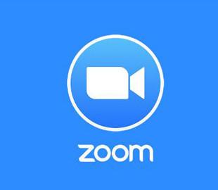 Нью-Йоркським школам заборонять використовувати Zoom для дистанційного навчання