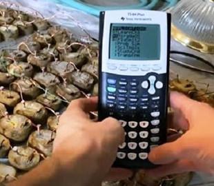 В Doom сыграли на картофельном калькуляторе