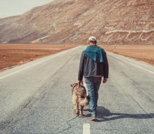 В Узбекистане будут платить деньги за ходьбу