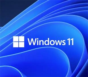 Китай не сможет обновиться на Windows 11