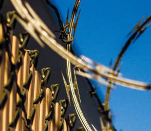 IT-компания SoftServe выплатила 380 миллионов за покупку исправительной колонии во Львове