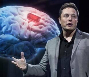 Илон Маск анонсировал демонстрацию электронного мозга Neuralink