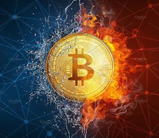 Исследование: биткоин остается самой популярной криптовалютой в даркнете
