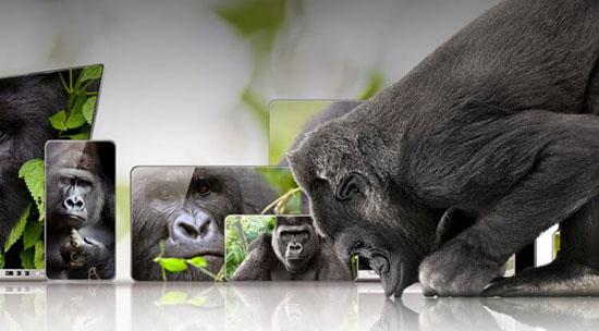 GorillaGlassFeature-750x414.jpg (52 KB)